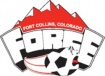 Force Soccer